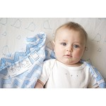 Набор пеленок SwaddleDesigns Swaddle Duo BL Big Chickies (SD-188TB)