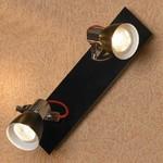 Купить Спот Lussole LSL-7401-02