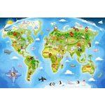 Купить Пазл Кастор Карта (В-040117)