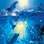 Фотообои W+G Turdecor Dolphin in the Sun 86x200 см (00513WG)