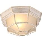 Купить Уличный потолочный светильник Artelamp A3121PF-1WG
