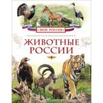 Купить Энциклопедия Росмэн Животные России (978-5-353-07246-1)