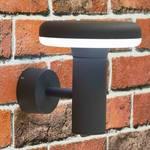 Купить Уличный настенный светодиодный светильник Citilux CLU01W