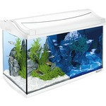 Tetra AquaArt LED Discover Line Tropical White Edition с LED освещением день / ночь 60л (белый)