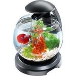 Купить Аквариумный комплекс Tetra Cascade Globe Filtered Glass Bowl 6,8л (черный)