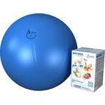 Купить Фитбол Альпина Пласт Стандарт голубой, диаметр 550 мм