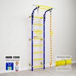 Купить Детский спортивный комплекс Romana Next 1 (ДСКМ-2С-8.06.Г1.490.18-24) синяя слива