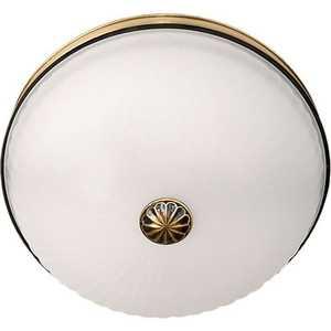Купить потолочный светильник MW-LIGHT 295013402 (114211) в Москве, в Спб и в России