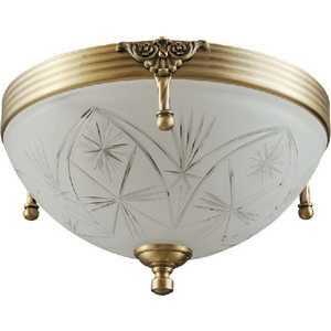 Потолочный светильник MW-LIGHT 317012802