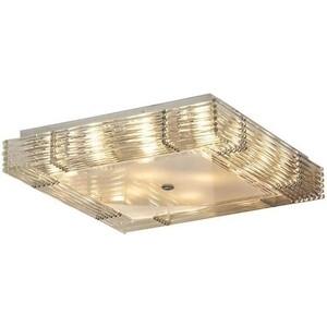 Потолочный светильник Lussole LSC-3407-10 аксессуар redline переходник адаптер с gopro на штативный винт rl218