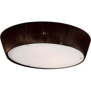 Потолочный светильник Citilux CL913142 citilux гофре cl913142