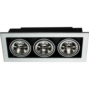 Купить точечный поворотный светильник Artelamp A5930PL-3SI (118054) в Москве, в Спб и в России