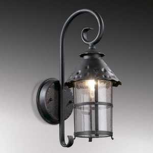 Уличный настенный светильник Odeon 2312/1W уличный настенный светильник odeon 2312 1w