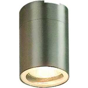 Уличный потолочный светильник Globo 3202