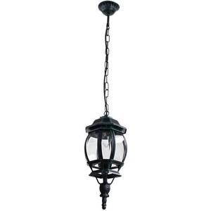 Уличный подвесной светильник Artelamp A1045SO-1BG