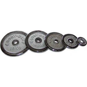 Диск хромированный Body-Gym 31 мм 5 кг (WP06-5.0) цена