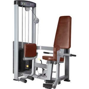 ��������� ����� ���� Bronze Gym D-019
