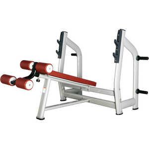 Скамья для жима с отрицательным наклоном Bronze Gym H-024 bronze gym h 037a