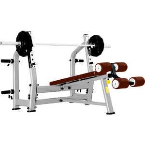 Скамья для жима с отрицательным наклоном Bronze Gym J-024 все цены