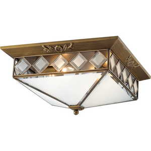 Потолочный светильник Odeon 2544/4 накладной потолочный светильник 2544 2 odeon light