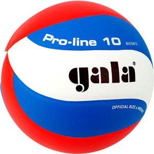 Мяч волейбольный Gala Pro-Line 10 размер 5, цвет бело-голубо-красный (BV5581S)