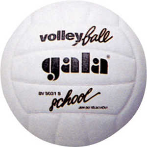 Мяч волейбольный Gala School Foam (BV5031S) цена