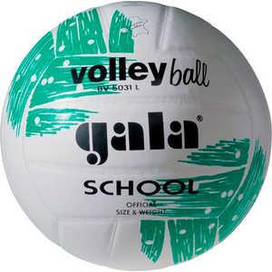Мяч волейбольный Gala размер 5 School (BV5031L)