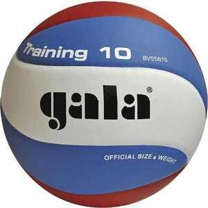 Мяч волейбольный Gala Training 10 (BV5561S), размер 5, цвет бело-голубо-красный мяч волейбольный gala pro line bv5121s