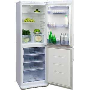 Холодильник Бирюса 149 цена и фото