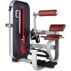 Разгибание спины Bronze Gym MT-009 C разгибание спины bronze gym mt 009