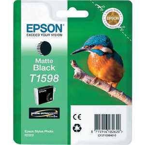 Картридж Epson Stylus Photo R2000 (C13T15984010) снпч epson stylus photo 935