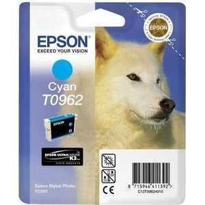 Картридж Epson R2880 (C13T09624010) new original f186000 print head printhead compatible for epson r1900 r2000 r2880 4880c 7880c 9880c oil solvent printer head