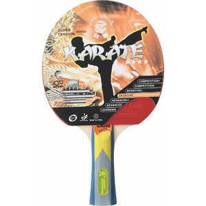 Ракетка для настольного тенниса Giant Dragon Karate ST12401 велосипед giant halfway 1 2013