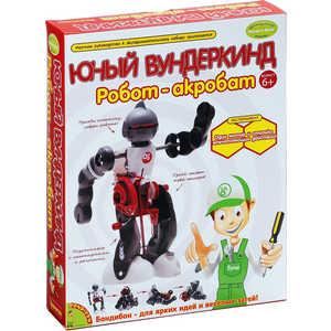 Опыты Bondibon французские Науки с Буки Юный вундеркинд Робот - акробат (GK013) bondibon развивающая игра французские опыты науки с буки юный вундеркинд робот акробат с 6 лет