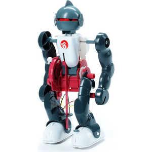 Опыты Bondibon французские Науки с Буки Юный вундеркинд Робот - акробат (GK013) от ТЕХПОРТ