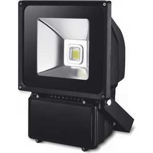Светодиодный прожектор X-flash XF-FL-B-80W-4000K Артикул 45433
