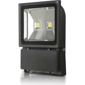 Светодиодный прожектор X-flash XF-FL-B-100W-6500K Артикул 45280