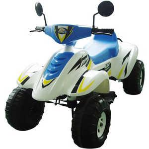 Электроквадроцикл Пламенный мотор Бич Рейсер (белый/синий) CT-558 WB зимний конверт leader kids с аппликацией медведь белый