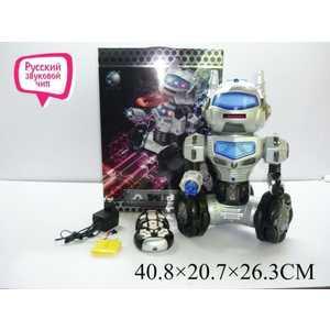 Shantou Gepai Робот на радиоупрвлении Линк TT906