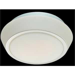 Потолочный светильник ST-Luce SL496.502.01