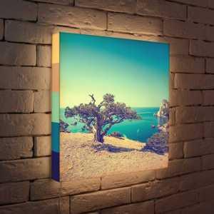 FotonioBox Лайтбокс Дерево на берегу 45x45-035