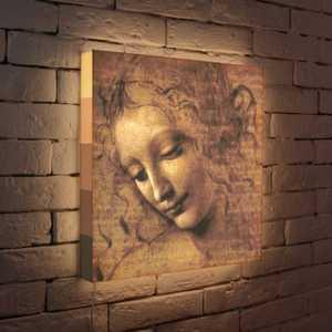 FotonioBox Лайтбокс Леонардо да Винчи Эскиз 45x45-039