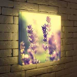 """FotonioBox Лайтбокс """"Полевые цветы"""" 45x45-044"""