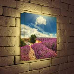 FotonioBox Лайтбокс ''Цветущие поля'' 35x35-034