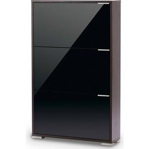 Обувница Вентал Арт Viva-3 стекло венге/черный глянец обувница с зеркалом вентал viva 3 стекло зеркало