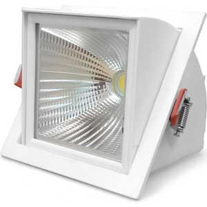 Встраиваемый светодиодный светильник Estares TS-10W AC 170-265V (Холодный белый)