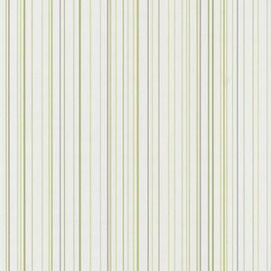 Обои бумажные P+S X-treme Color 0.53х10м (5564-50)