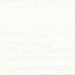 Обои виниловые ИПА Серия 20xx 1.06х25м (2004)