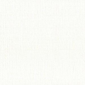 Обои виниловые ИПА Серия xxx1030F 1.06х25м (0191030F)