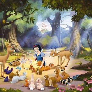Фотообои Disney Edition 1 Schneewittchen 254 х 184см. фотообои decoretto поле лютиков 180 х 254 см